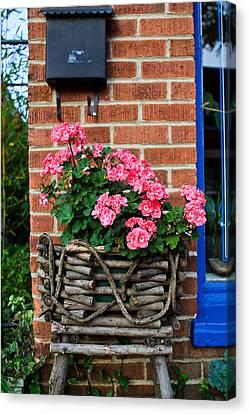 Carnations In A Basket Black Mountain Nc Canvas Print by Mela Luna