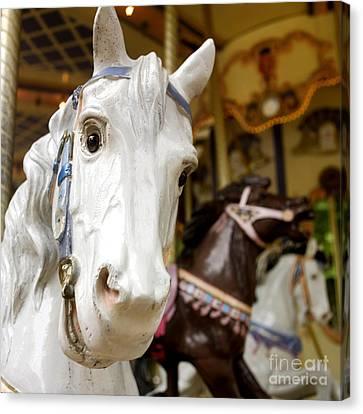 Carousel Horse Canvas Print by Bernard Jaubert