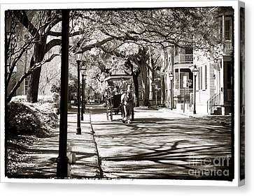 Carriage Ride In Charleston Canvas Print by John Rizzuto