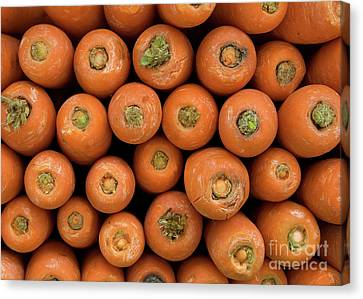 Carrots Canvas Print by Rick Piper Photography