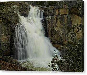 Cascade Creek Under The Bridge Canvas Print by Bill Gallagher