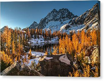Cascades Ring Of Larches Canvas Print by Mike Reid