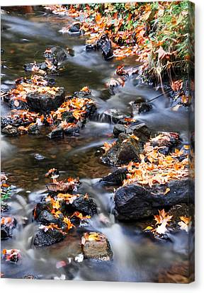 Cascading Autumn Leaves On The Miners River Canvas Print by Optical Playground By MP Ray