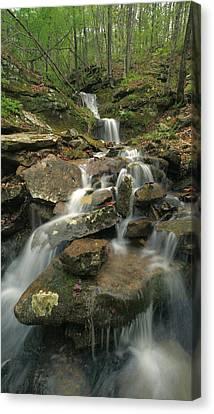 Cascading Creek Mulberry River Arkansas Canvas Print by Tim Fitzharris