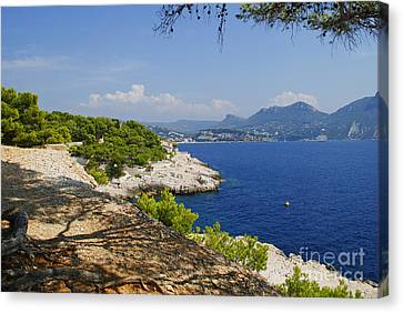 Amazing Coast Of Cassis On French Riviera Canvas Print by Maja Sokolowska