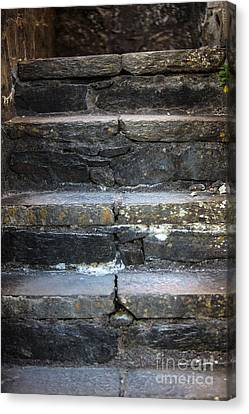Castle Stairs Canvas Print by Iris Richardson