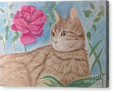 Cat And Flower Canvas Print by Cybele Chaves