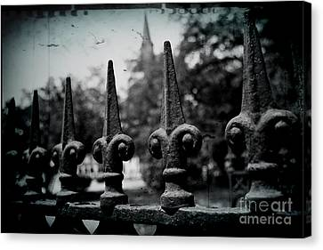 Cathedral Fence Canvas Print by Scott Pellegrin