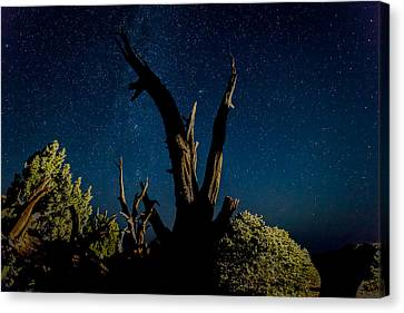 Cathedral Valley Night Sky Canvas Print by Jennifer Grover