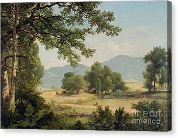 Catskill Meadows In Summer Canvas Print by Asher Brown Durand