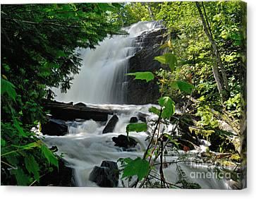 Cattyman Falls Canvas Print by Larry Ricker