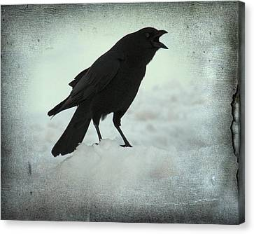 Cawing Winter Crow Canvas Print by Gothicolors Donna Snyder