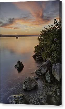 Cayuga Sunset I Canvas Print by Michele Steffey