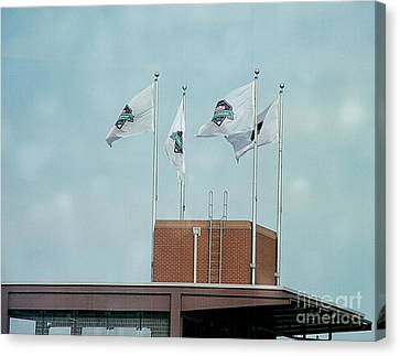 Center Field Flags Canvas Print by Terry Weaver