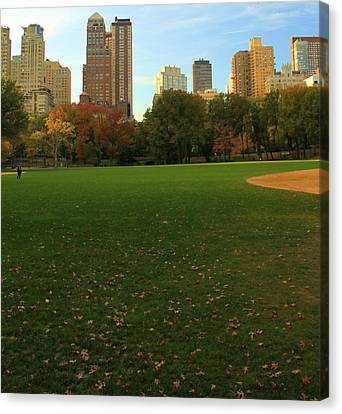 Central Park In Autumn Canvas Print by Dan Sproul