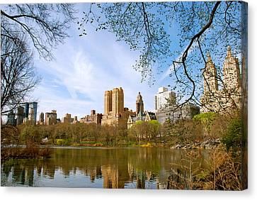 Central Park In Spring Canvas Print by Eric Dewar