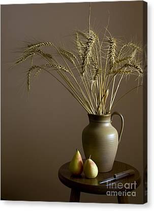 Ceramic Pot And Pears.still Life Canvas Print by Rita Kapitulski