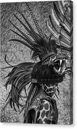 Chaak Balam Canvas Print by Nichon Thorstrom