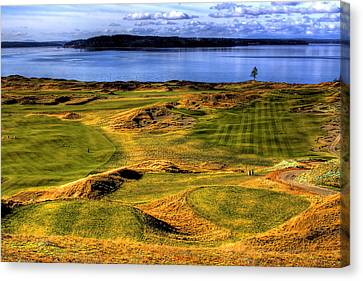 Chambers Bay Lone Tree Canvas Print by David Patterson