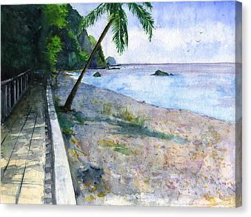 Champagne Snorkel Dominica Canvas Print by John D Benson