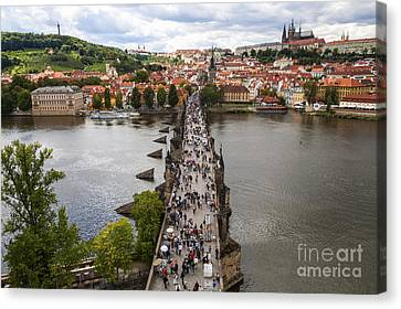 Charles Bridge Canvas Print by Diane Macdonald