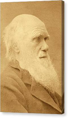 Charles Darwin Canvas Print by American Philosophical Society