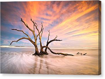 Charleston Sc Sunset Folly Beach Trees - The Calm Canvas Print by Dave Allen