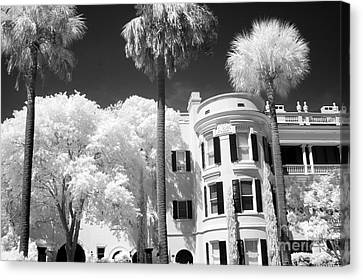 Charleston South Carolina Black White Battery Park Canvas Print by Kathy Fornal