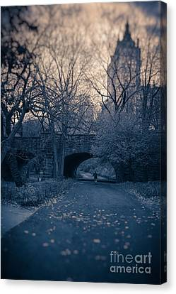 Chased Through Central Park Canvas Print by Edward Fielding