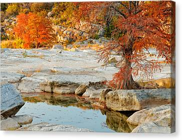 Chasing The Light At Pedernales Falls State Park Hill Country Canvas Print by Silvio Ligutti