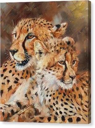 Cheetah And Cub Canvas Print by David Stribbling
