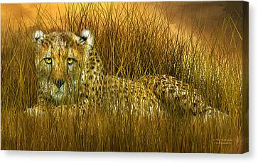 Cheetah - In The Wild Grass Canvas Print by Carol Cavalaris
