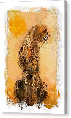 Cheetah Canvas Print by Steve K