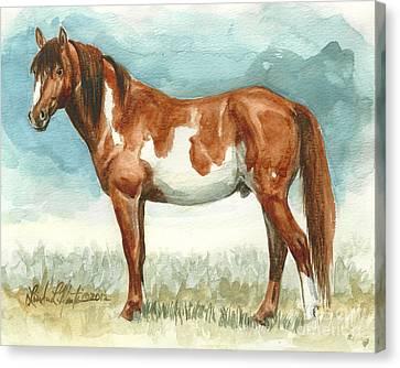 Cherokee Wild Stallion Of Sand Wash Basin Canvas Print by Linda L Martin