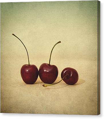 Cherries Canvas Print by Taylan Soyturk