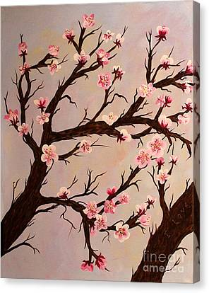 Cherry Blossom 1 Canvas Print by Barbara Griffin