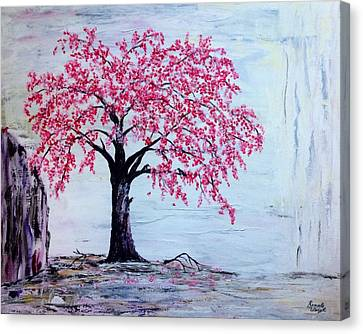 Cherry Blossom  Canvas Print by Renate Voigt