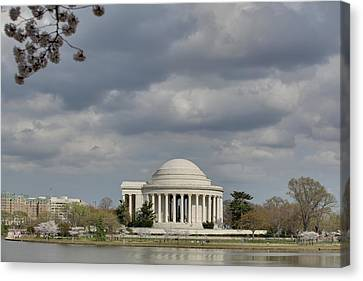Cherry Blossoms With Jefferson Memorial - Washington Dc - 011339 Canvas Print by DC Photographer