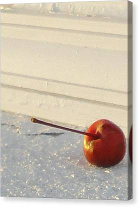 Cherry In The Spotlight Canvas Print by Guy Ricketts