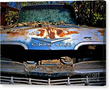 Chevrolet Picking Canvas Print by Gwyn Newcombe
