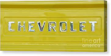 Chevrolet Pickup Tailgate Canvas Print by Tim Gainey