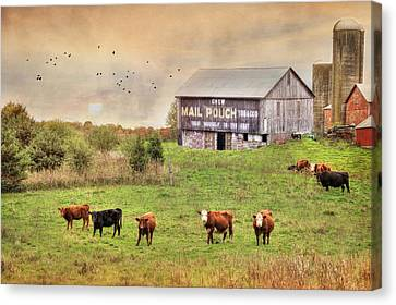 Chew Mail Pouch Canvas Print by Lori Deiter