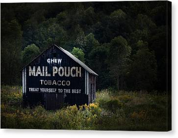 Chew Mailpouch Canvas Print by Tom Mc Nemar