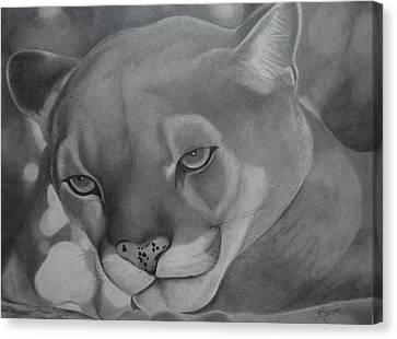 Cheyenne Canvas Print by Christine  Blodgett