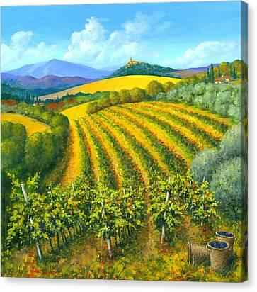 Chianti Feeling 30 X 30 Canvas Print by Michael Swanson