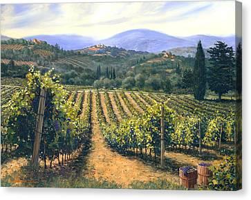 Chianti Vines Canvas Print by Michael Swanson