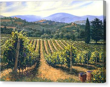 Chianti Vines Canvas Print by Michael Swanson