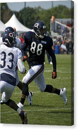 Chicago Bears Te Dante Rosario Training Camp 2014 04 Canvas Print by Thomas Woolworth