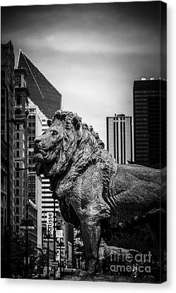 Chicago Lion Statues In Black And White Canvas Print by Paul Velgos