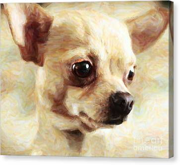 Chihuahua Dog - Painterly Canvas Print by Wingsdomain Art and Photography